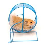hamster-analytics